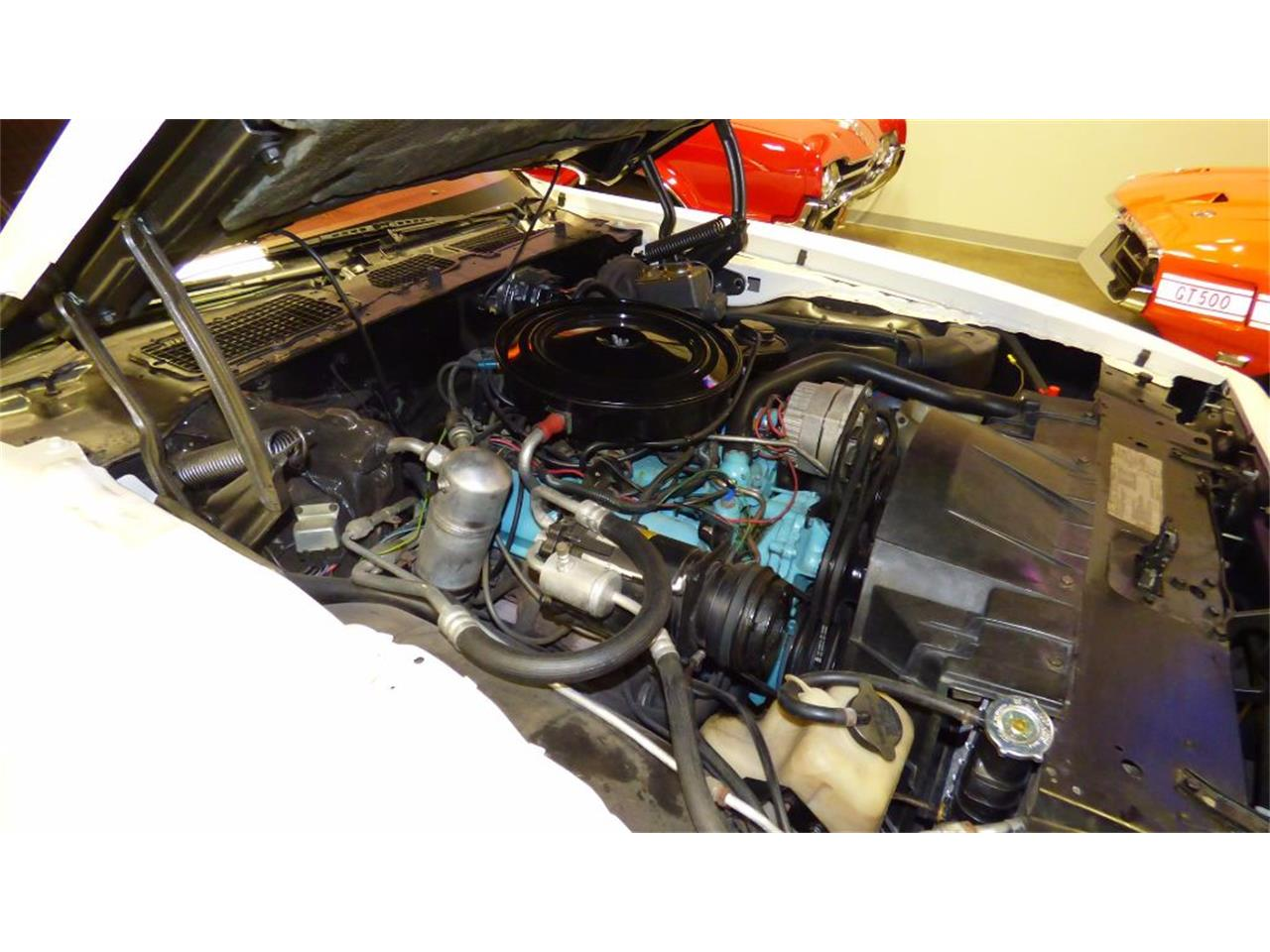 Large Picture of '79 Firebird - $14,995.00 Offered by Cruisers Specialty Autos - F2EV