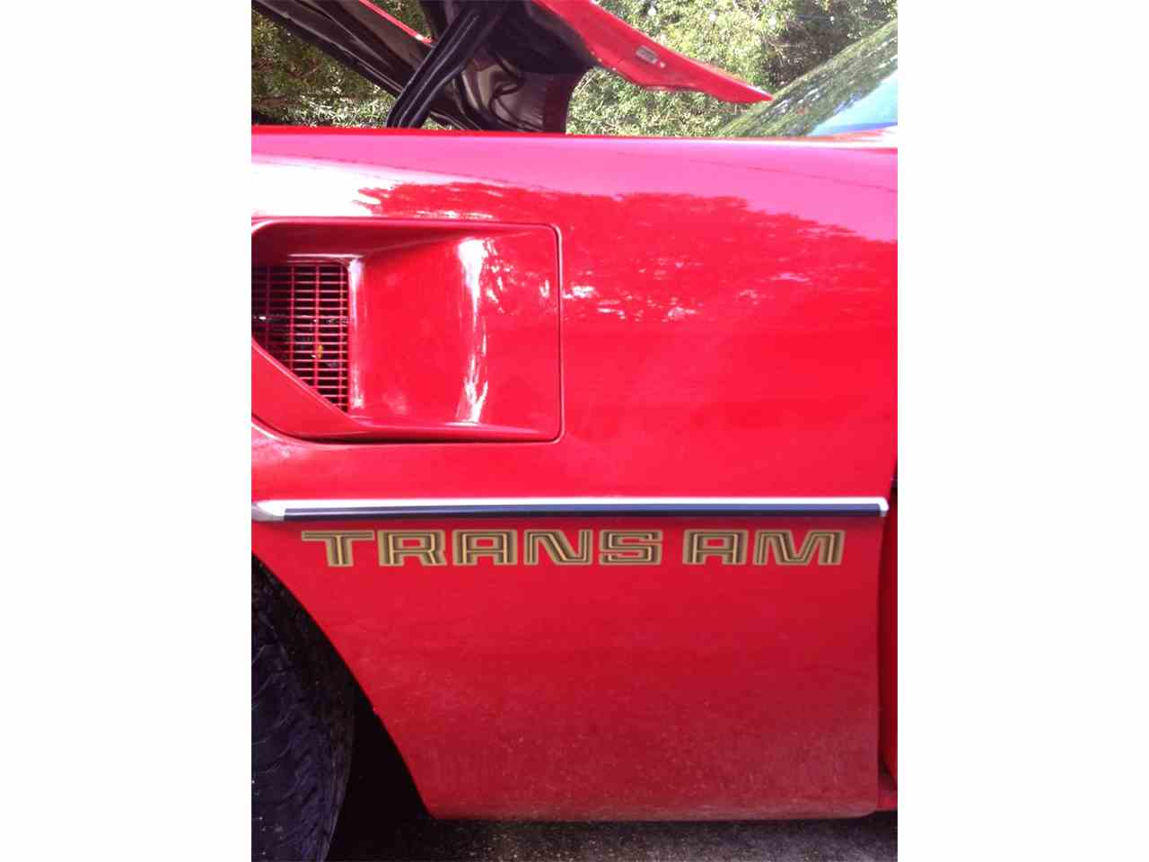 Large Picture of '79 Firebird Trans Am - F2WL