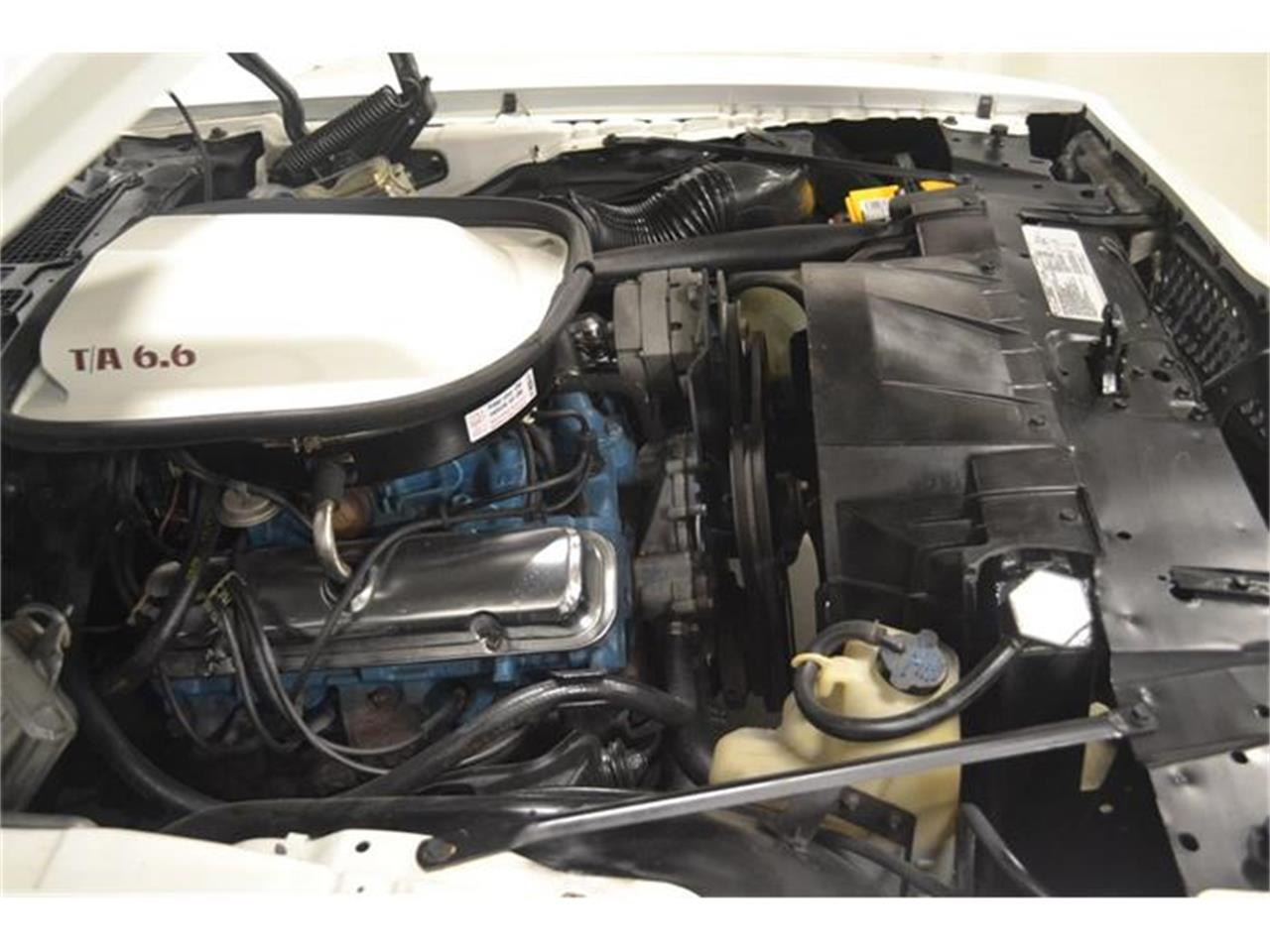 Large Picture of '77 Firebird Trans Am - F8CC