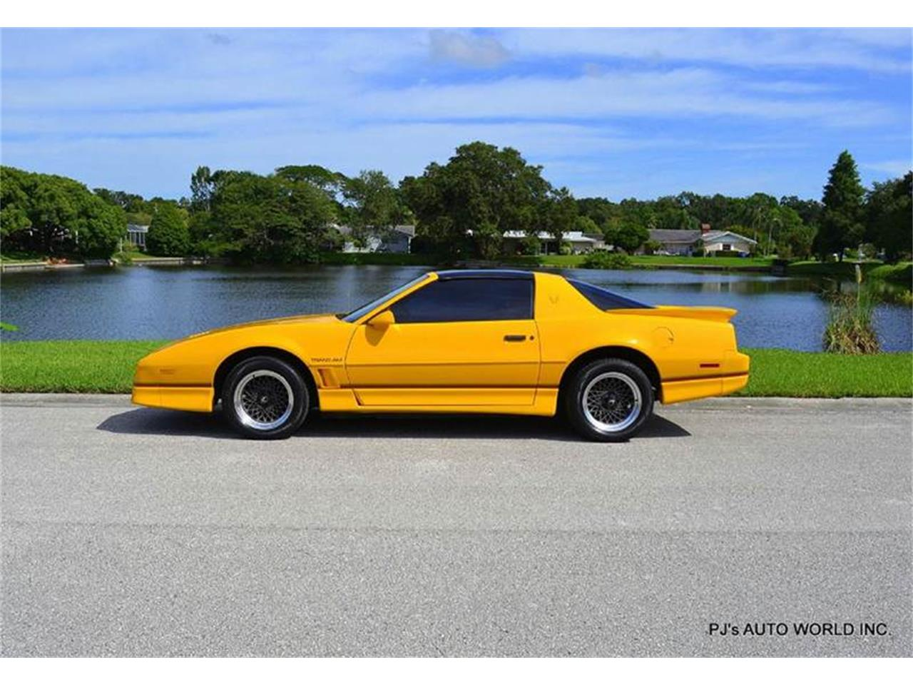 Large Picture of '86 Pontiac Firebird located in Florida - FF1Q