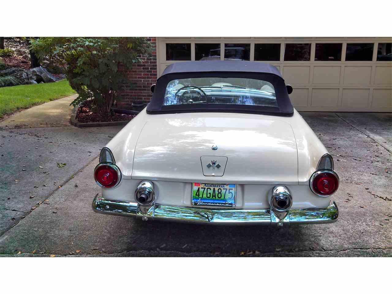 Large Picture of '55 Thunderbird - F8LU