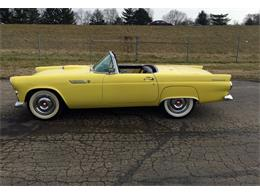 Picture of 1955 Ford Thunderbird - FHWX