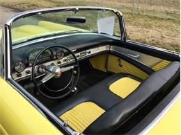 Picture of Classic 1955 Ford Thunderbird - FHWX