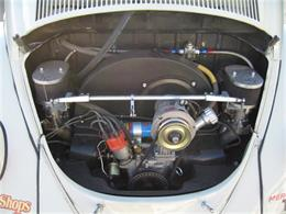 Picture of '63 Beetle - FLLA