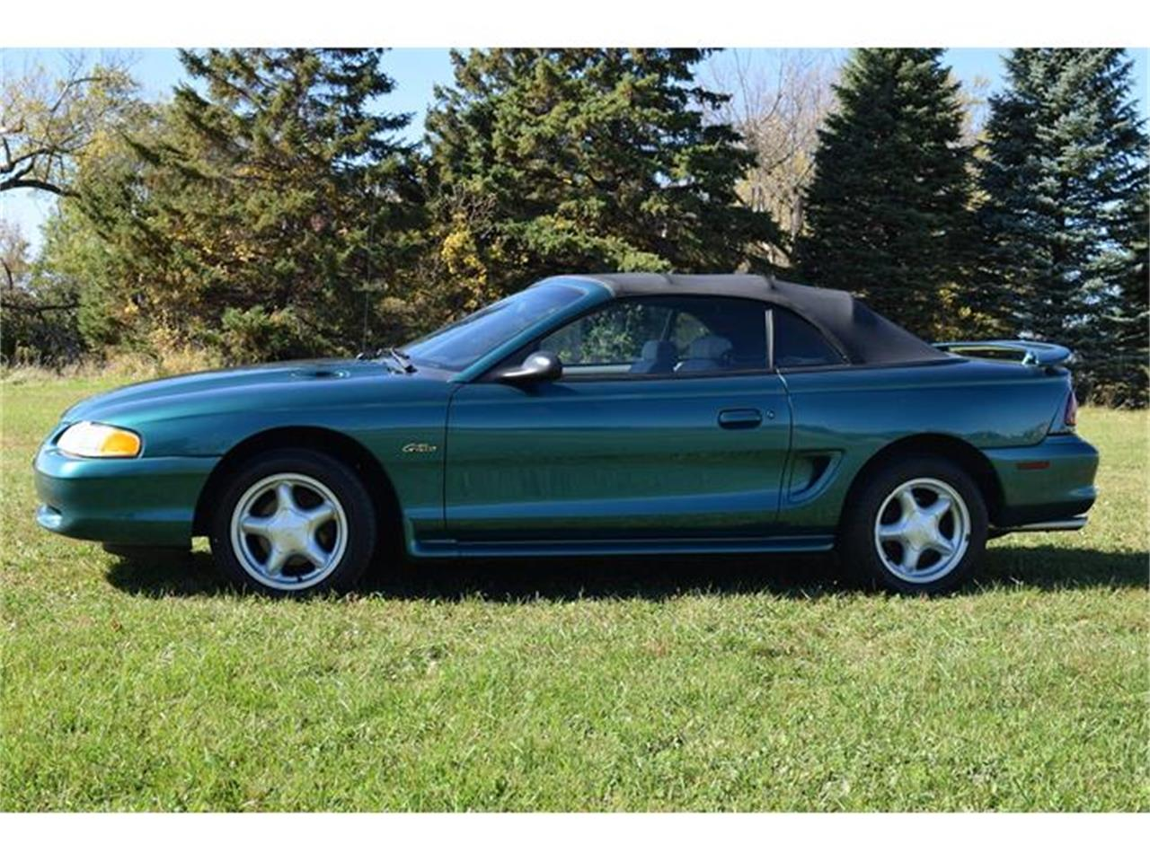 Large Picture of '98 Mustang - FOBU