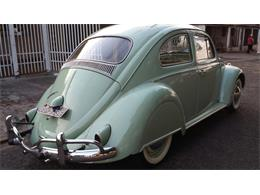 Picture of '61 Beetle - FP76