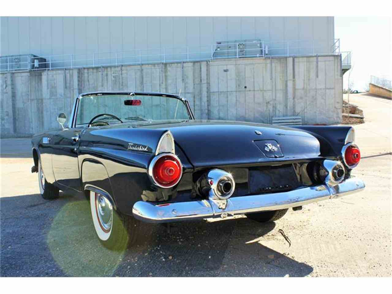 Large Picture of '55 Thunderbird - FNTT
