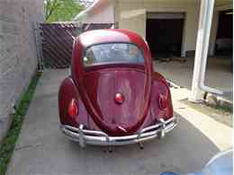Picture of '63 Beetle - FUX1