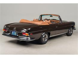 Picture of 1971 280 SE 3.5 Cabriolet located in California Offered by Canepa - G0JQ