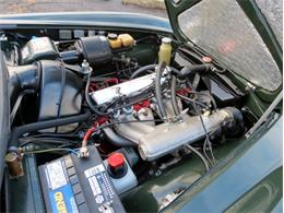 Picture of '71 P1800E - G5PV