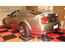 Picture of '09 Mustang located in North Andover Massachusetts Offered by Silverstone Motorcars - G60G
