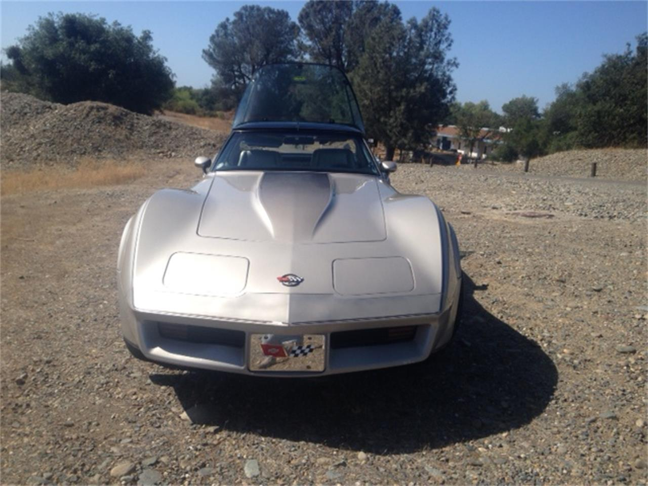 Large Picture of '82 Corvette - G6N4