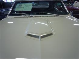 Picture of '66 GTO - G8PO
