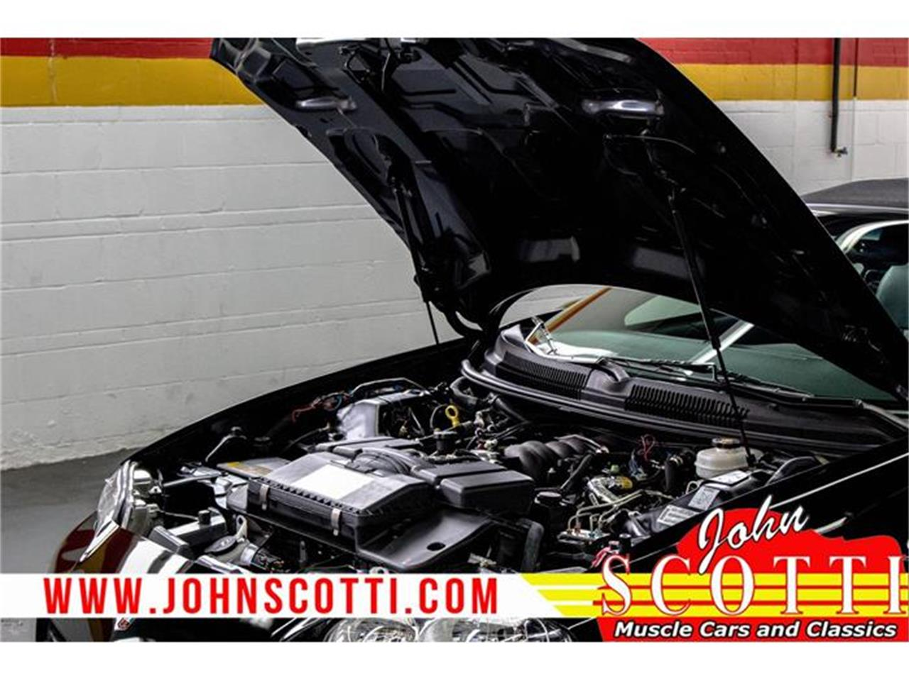 Large Picture of '02 Chevrolet Camaro - $38,995.00 Offered by John Scotti Classic Cars - G9NO