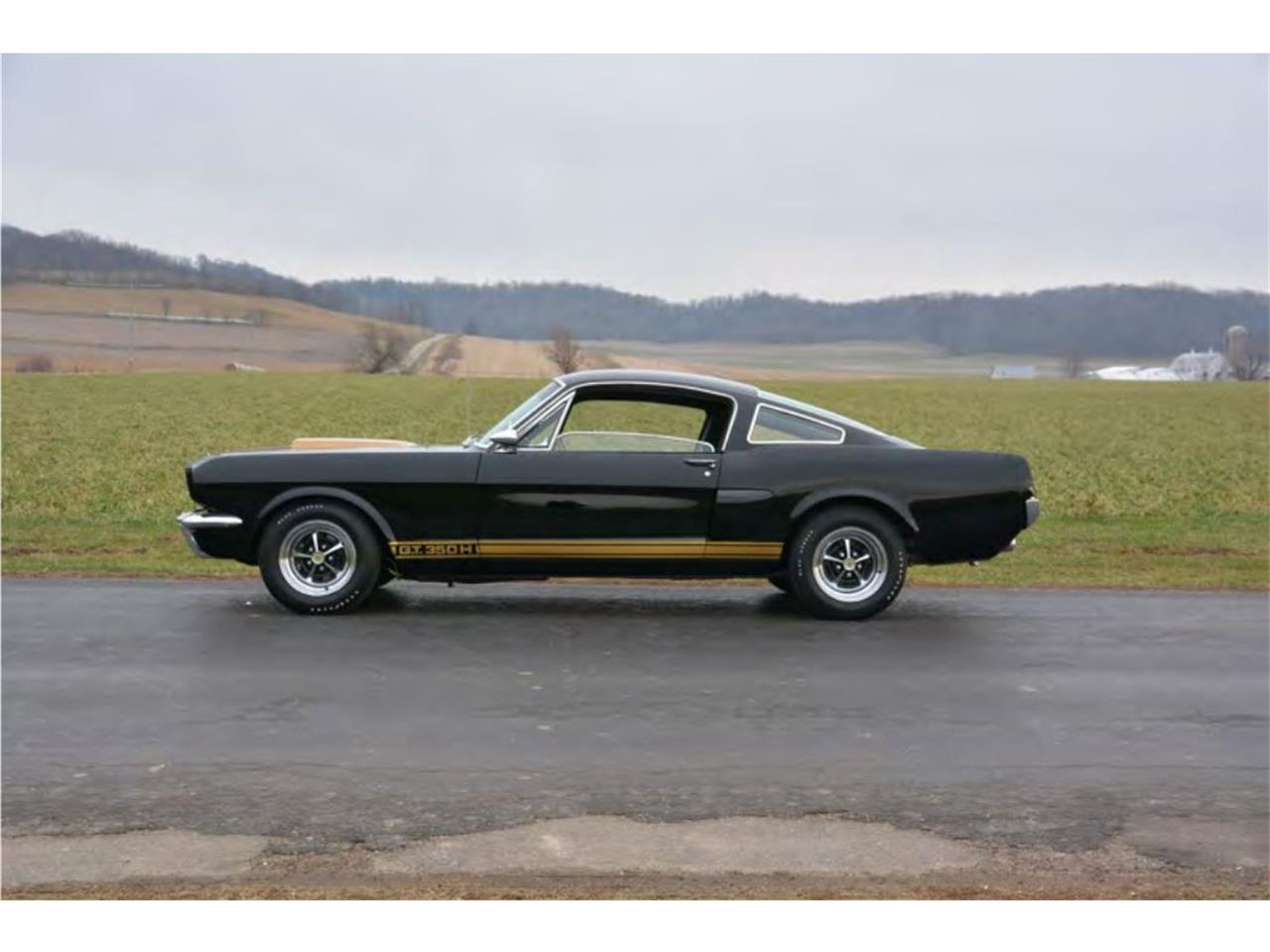 Large Picture Of 66 GT350