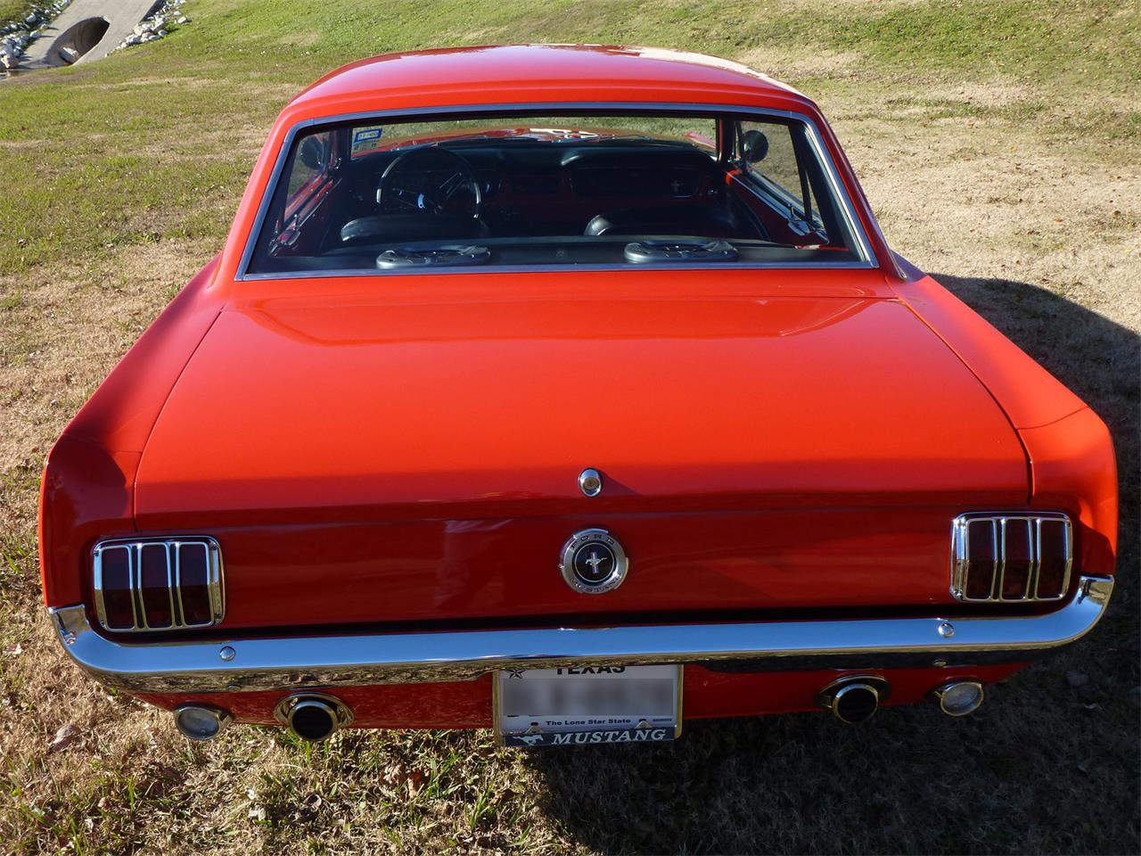 Large Picture of '65 Mustang - GAI2