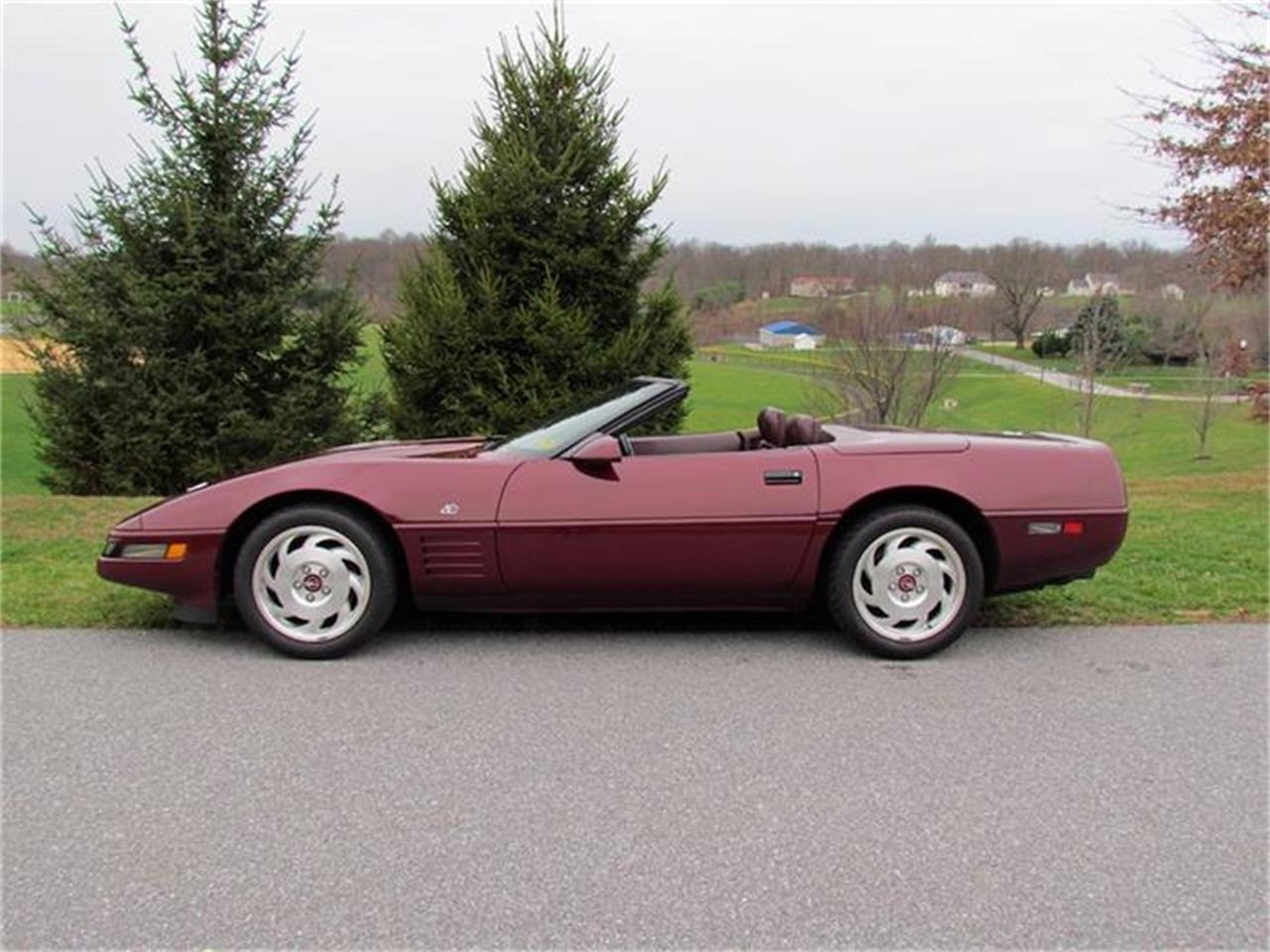 Large Picture of '93 Chevrolet Corvette located in Lee North Carolina - $18,900.00 Offered by Buyers and Sellers Connection LLC - GANY