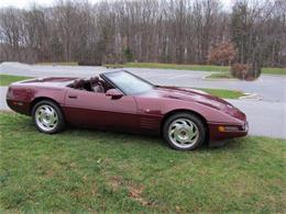 Picture of 1993 Chevrolet Corvette located in North Carolina Offered by Buyers and Sellers Connection LLC - GANY