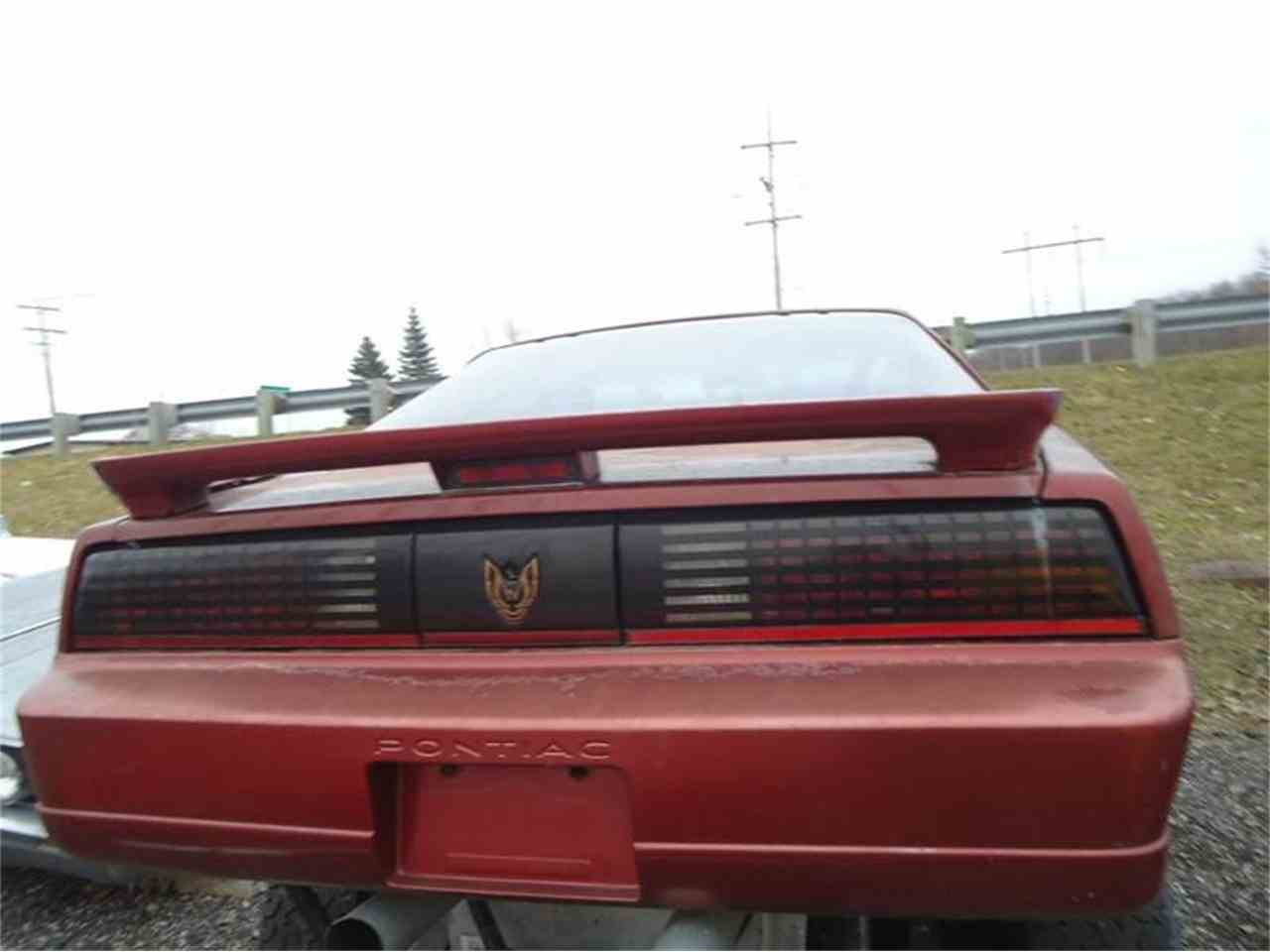 Large Picture of '89 Firebird Trans Am - GD2P