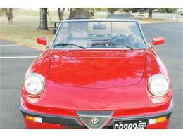 Picture of '88 Alfa Romeo Quadrifoglio - $9,900.00 Offered by Classic Car Center - GI2S
