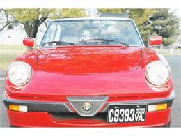 Picture of 1988 Quadrifoglio located in Fredericksburg Virginia - $9,900.00 Offered by Classic Car Center - GI2S