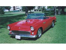 Picture of '55 Thunderbird - $39,500.00 Offered by a Private Seller - GI3T