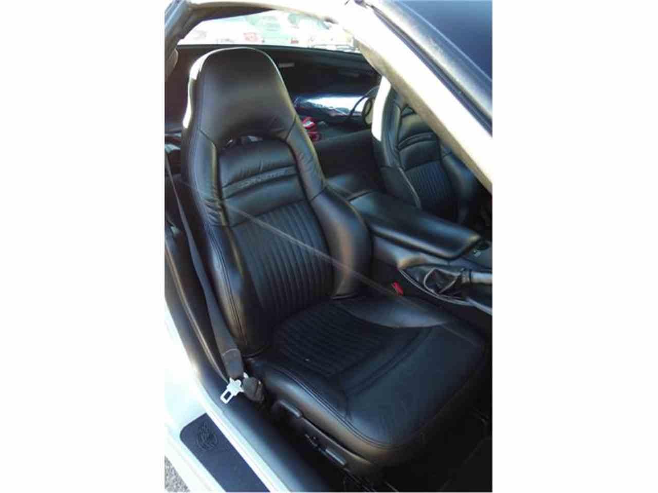 Large Picture of '04 Corvette - GJT5