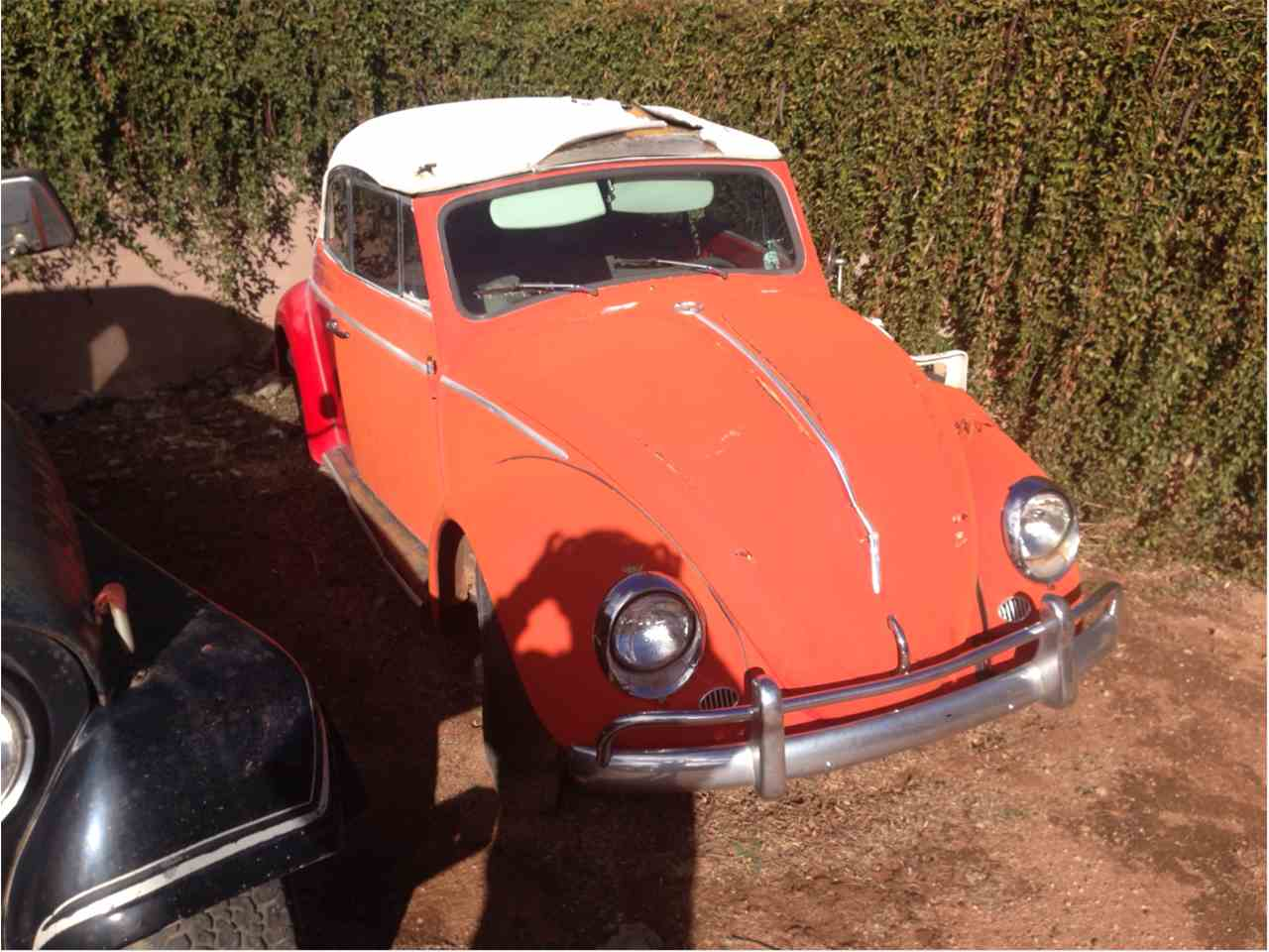 Large Picture of Classic 1963 Volkswagen Convertible - $10,000.00 Offered by a Private Seller - GLQW