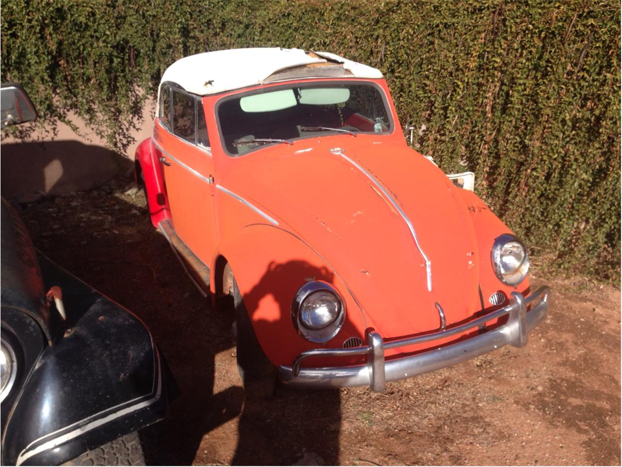 Large Picture of Classic 1963 Volkswagen Convertible located in Arizona - $10,000.00 - GLQW