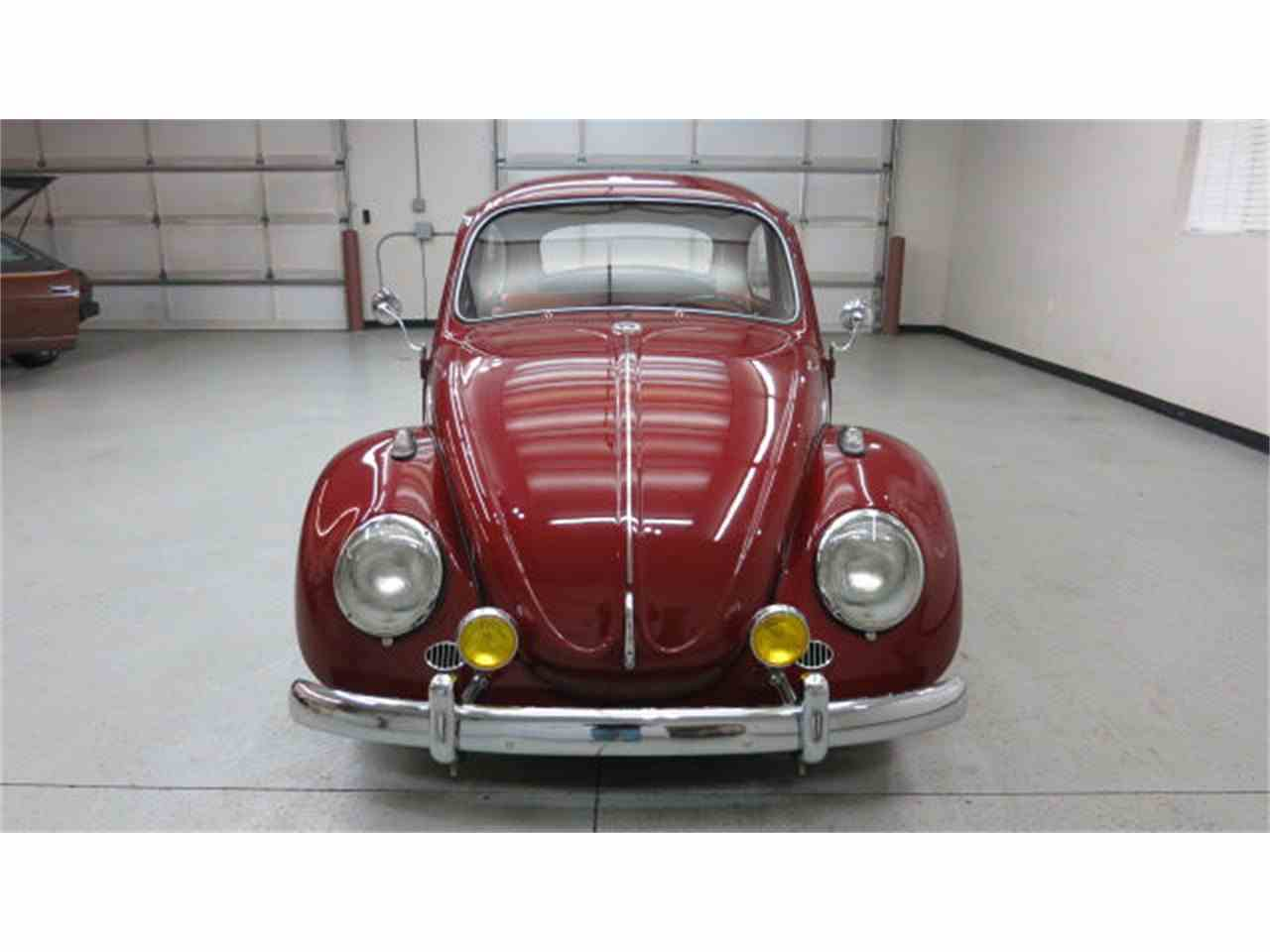Large Picture of '69 Beetle - GMAY