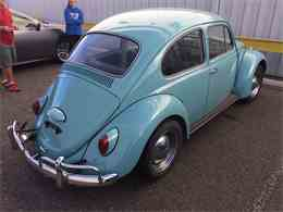 Picture of '67 Beetle - GN4I