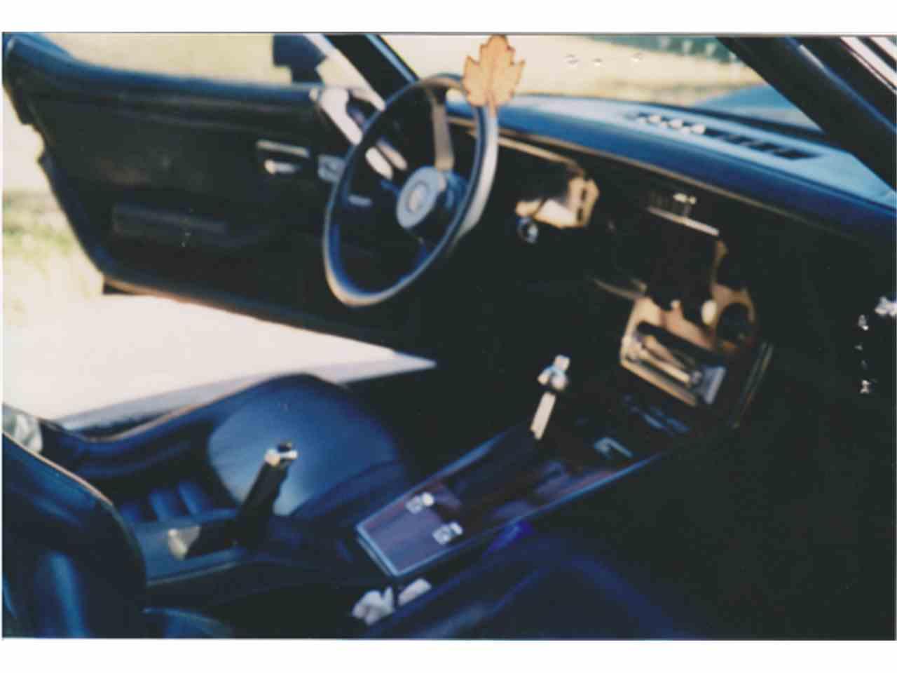 Large Picture of '82 Corvette - GPZZ