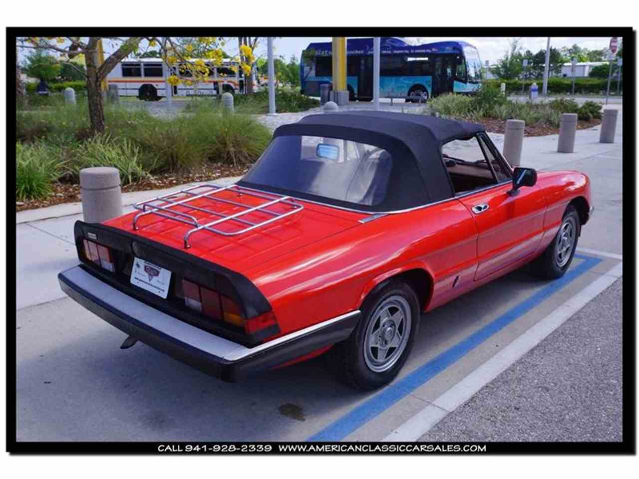 Large Picture of '84 Spider - HCIN
