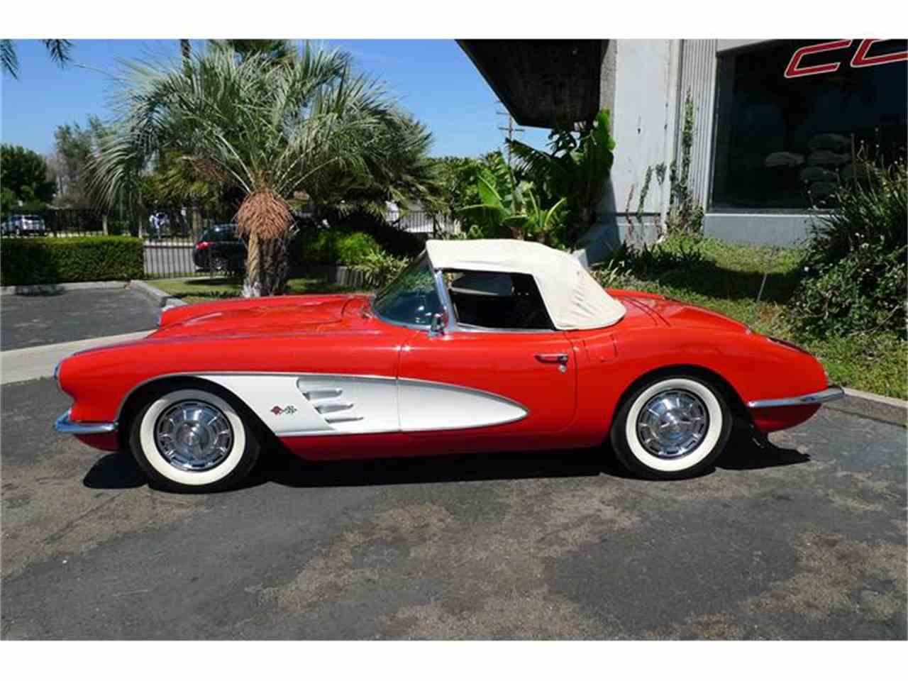 Large Picture of '59 Corvette - HDUR