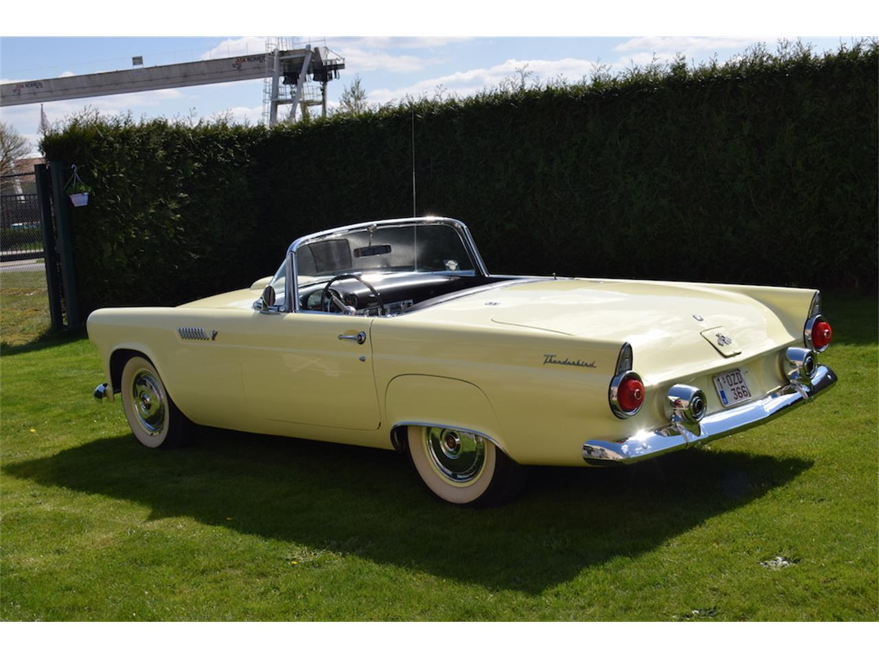 Large Picture of Classic 1955 Thunderbird located in europe Offered by a Private Seller - HHJ2