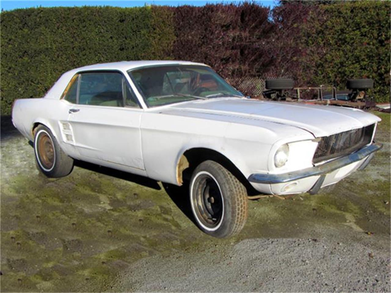 Large Picture of '67 Mustang - HMBE