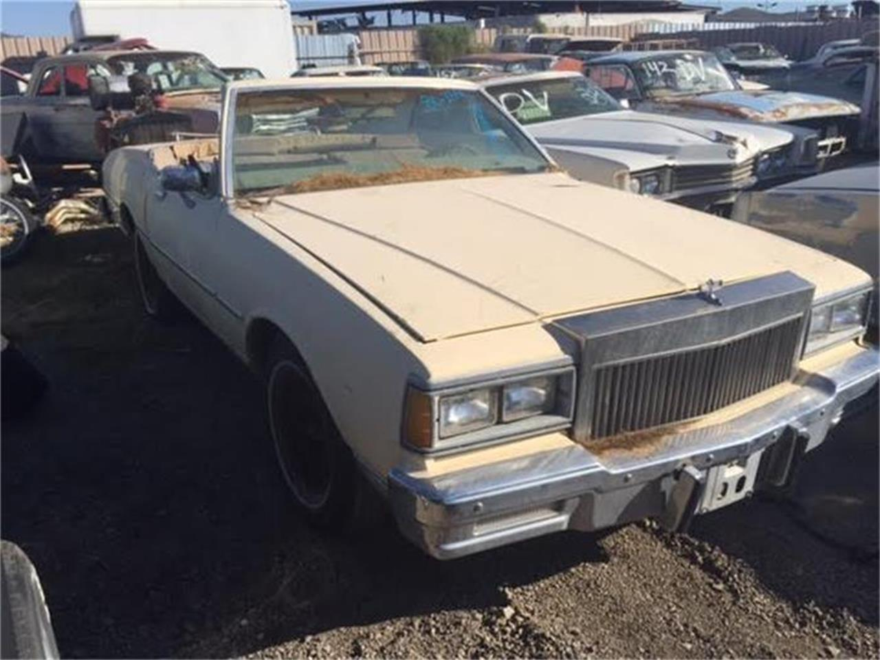 Large Picture of '80 Caprice - HQSY