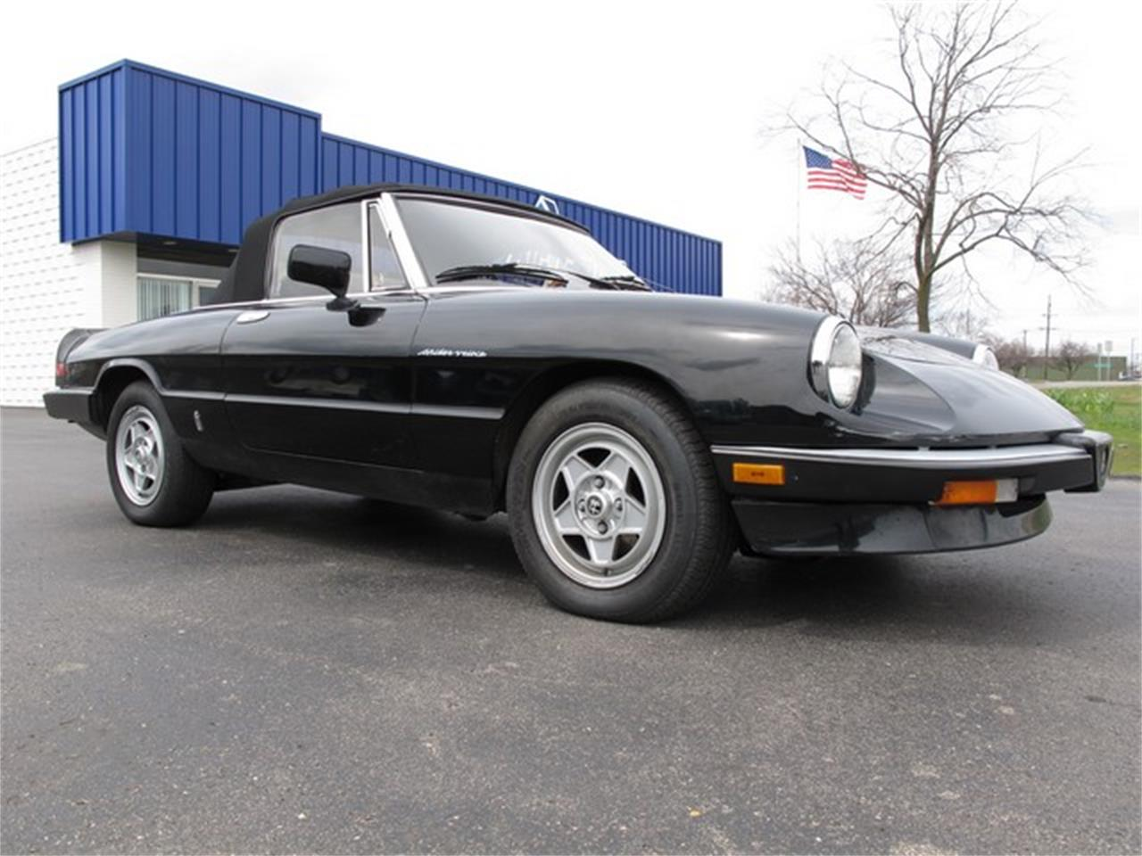 Large Picture of '85 Spider - HTJF