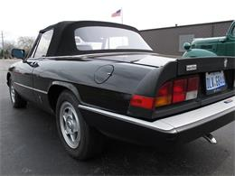 Picture of 1985 Spider - HTJF