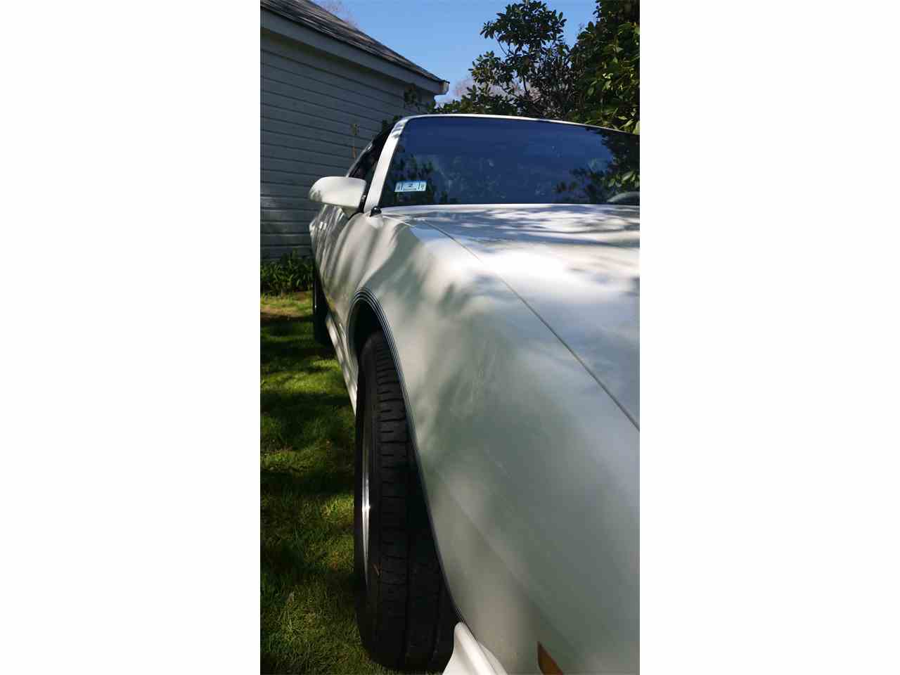 Large Picture of '84 Firebird Trans Am - I0DN
