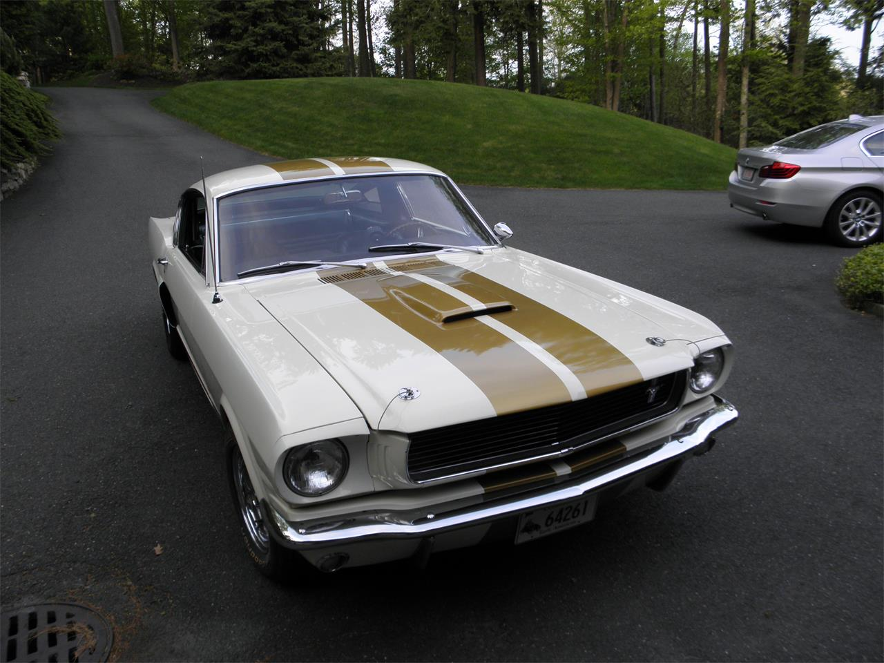 Large Picture of Classic '66 Shelby Mustang located in Connecticut - I9VF