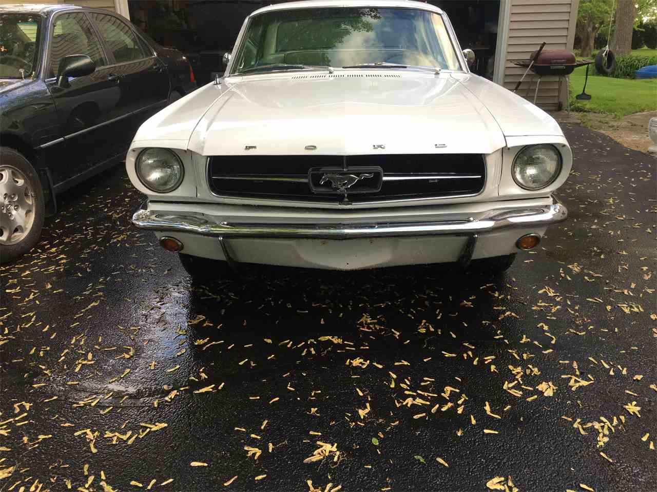 Large Picture of '65 Mustang - IEQS