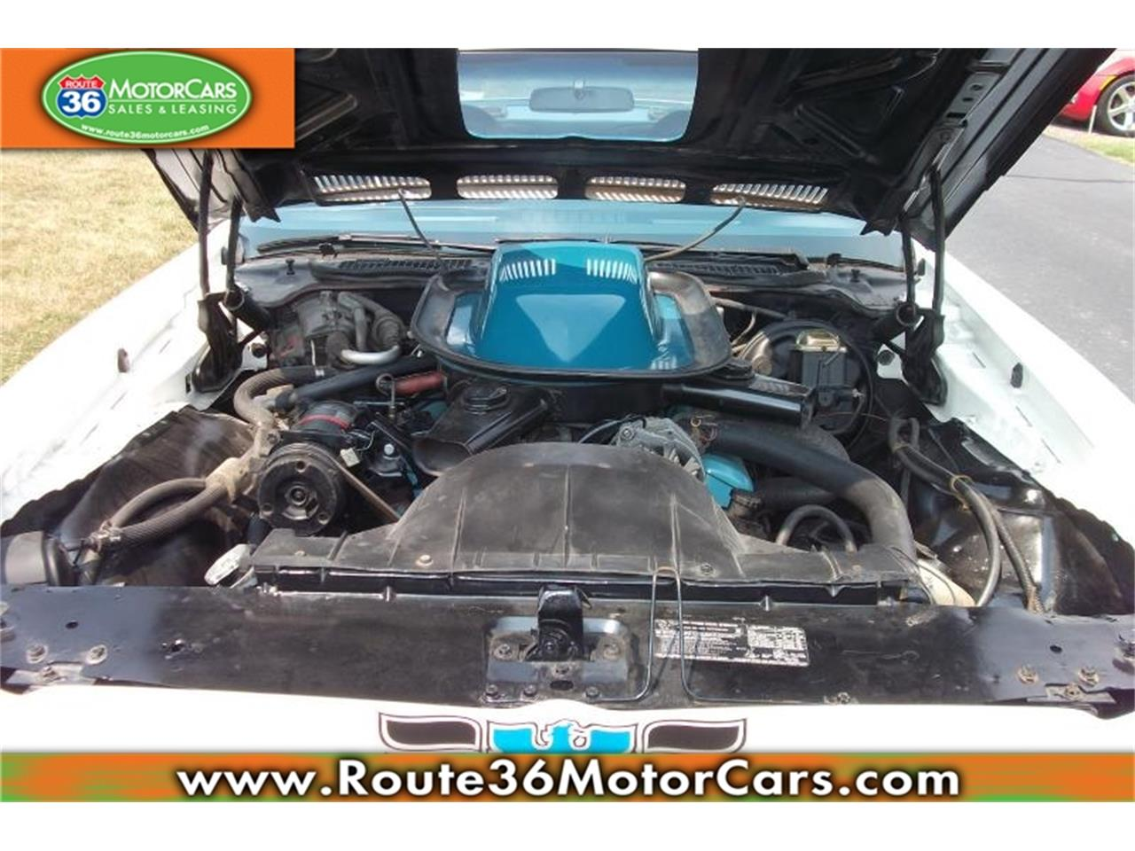 Large Picture of 1972 Pontiac Firebird - $54,975.00 Offered by Route 36 Motor Cars - IKH6