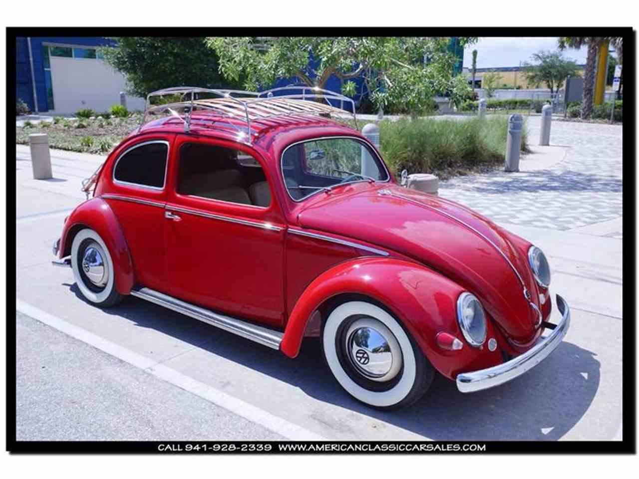 photos beetle sarasota information and volkswagen new zombiedrive