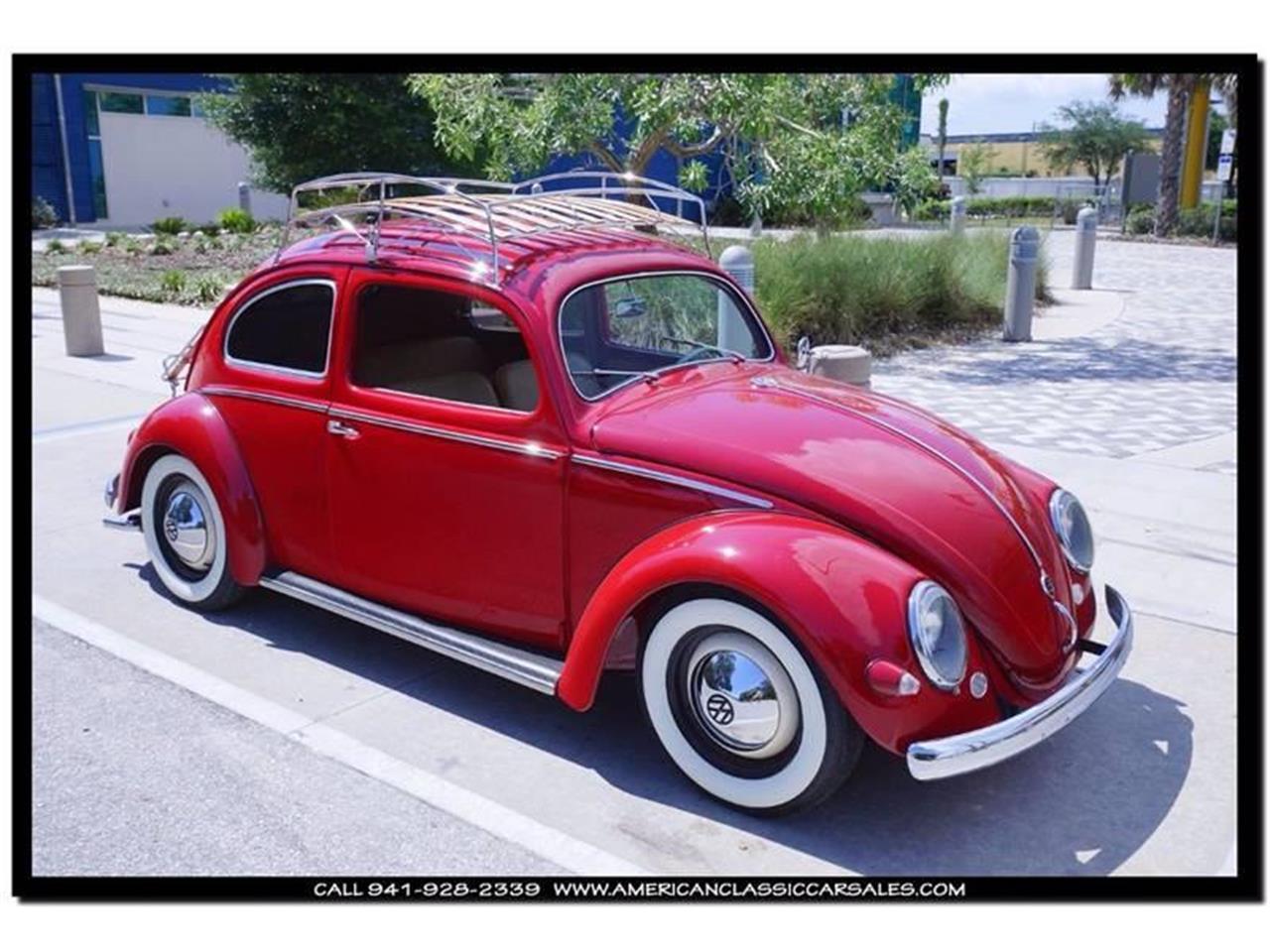 For Sale: 1955 Volkswagen Beetle in Sarasota, Florida