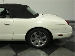 Picture of '03 Thunderbird - IQIS