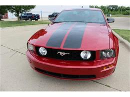 Picture of '08 Mustang GT - IR1S