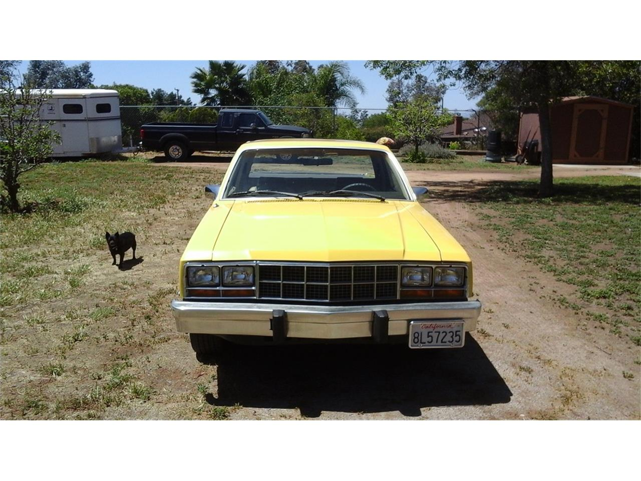 Large Picture of '81 Durango - ISFP