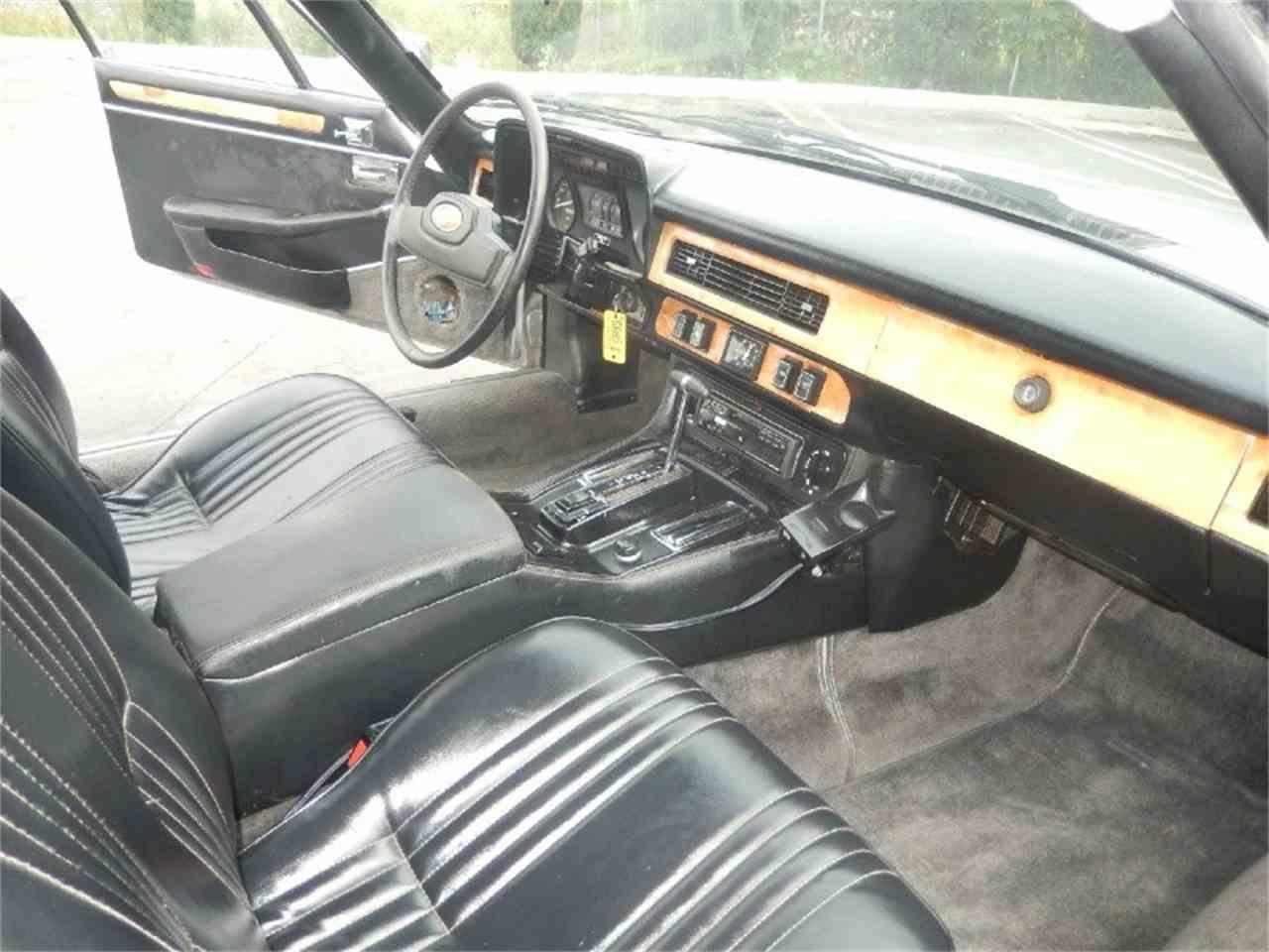 Large Picture of '82 XJS - IUS0