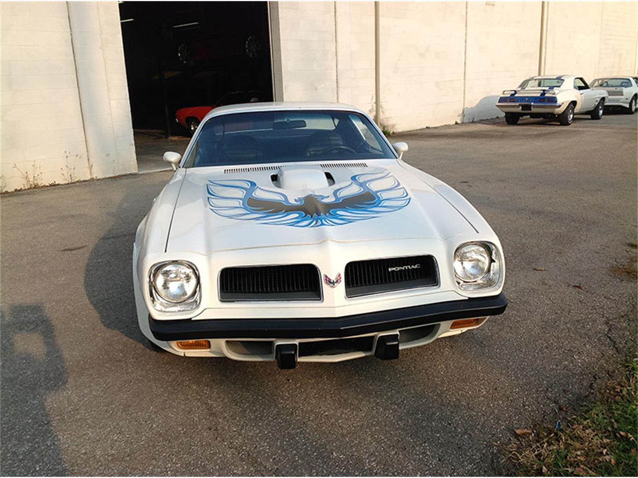 Large Picture of '74 Firebird Trans Am - IVW6